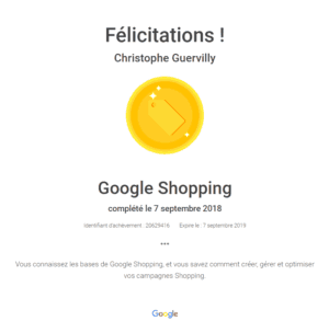 Expert Google Shopping